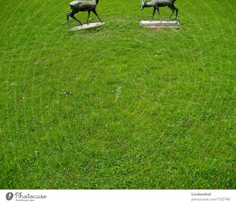 geschnittene Rehe Wiese Regen Metall Statue Wildtier Fressen Säugetier Bronze Bock