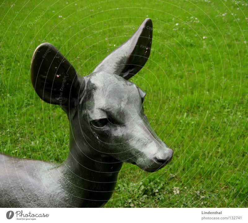 Rehkopf Wiese Regen Metall Wildtier Ohr Statue Säugetier Bronze Bock