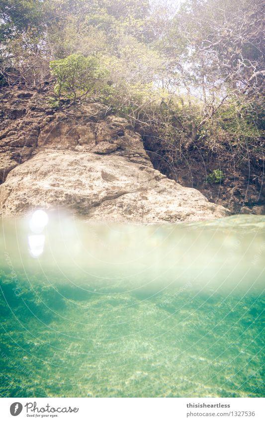 halb/halb Sommer Sommerurlaub Sonne Meer Wassersport Schwimmen & Baden Küste Bucht Fjord Riff Karibik Karibisches Meer Insel Bequia Stein tauchen blau gelb grün