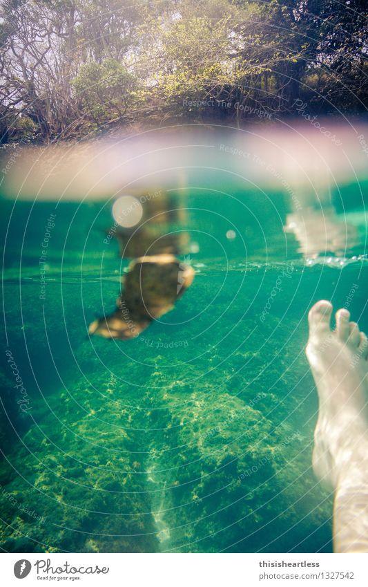 den Halt verlieren! Ferien & Urlaub & Reisen Pflanze Sommer Wasser Sonne Meer Ferne Strand Umwelt Wärme Küste Freiheit Schwimmen & Baden Stein Fuß Wellen