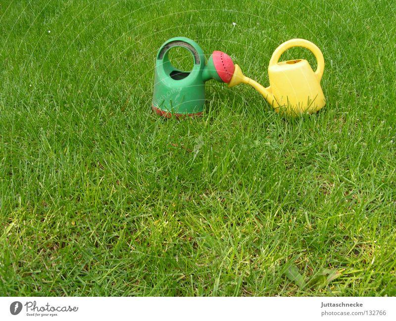 Bussi Kannen Gießkanne grün gelb Küssen Wiese Gras gießen Gärtner Gartenarbeit Spielzeug Wachstum nass Sommer Liebe Rasen Juttaschnecke Natur Außenaufnahme