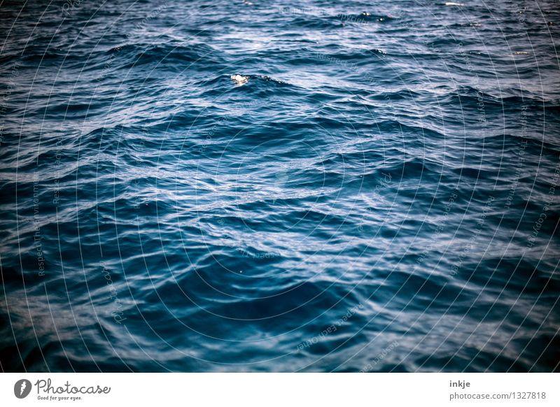 Du suchst das Meer Natur blau Wasser Meer dunkel Umwelt Bewegung Stimmung wild Kraft Wellen groß bedrohlich Urelemente rein Wasseroberfläche