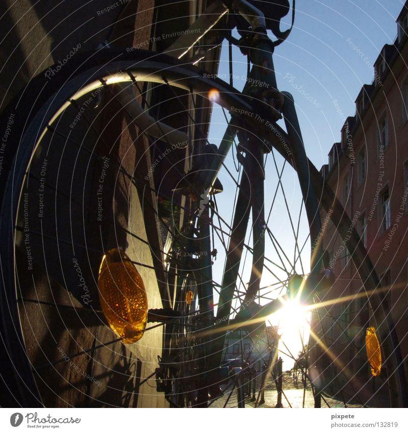 fahrradlegende Sonne Freude Spielen Fahrrad Speichen Reifenpanne Reflektor Rennrad Fahrradreifen