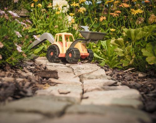 Yo, wir schaffen das! Pflanze grün Blume Freude gelb Gras Spielen Stein Arbeit & Erwerbstätigkeit orange Freizeit & Hobby Kindheit Sträucher Kindheitserinnerung
