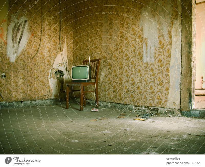 Sendeschluß alt Blume Einsamkeit Innenarchitektur Wege & Pfade Wohnung Raum kaputt retro Baustelle Kabel Stuhl Umzug (Wohnungswechsel) Möbel verfallen Fernseher