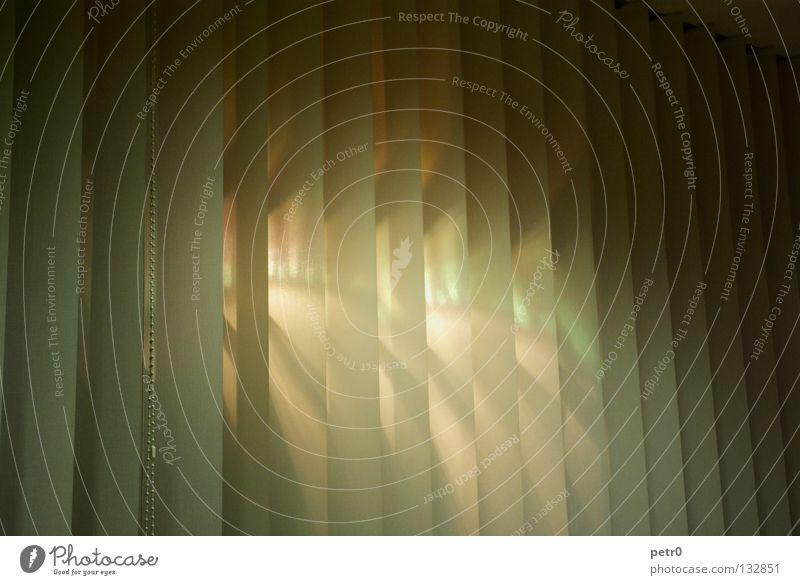 Luminance Sonne dunkel Fenster Wärme Arbeit & Erwerbstätigkeit Beleuchtung geschlossen Stoff Vorhang Spalte Lamelle Lichtstrahl steril Lichtschein