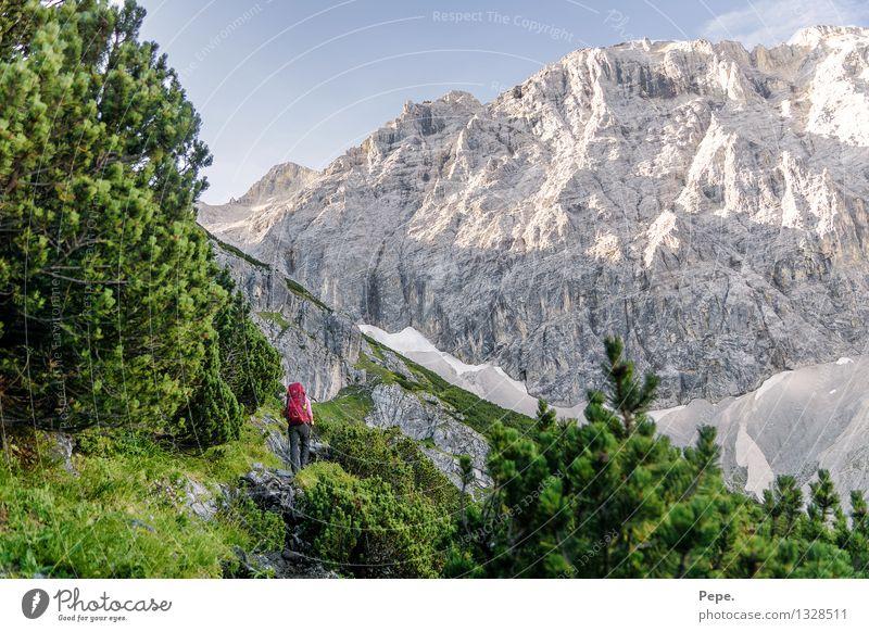 2x Wanderlust wandern Umwelt Natur Landschaft Felsen Alpen Berge u. Gebirge Gipfel Sport rot Baum grün Wege & Pfade Farbfoto Tag Panorama (Aussicht)