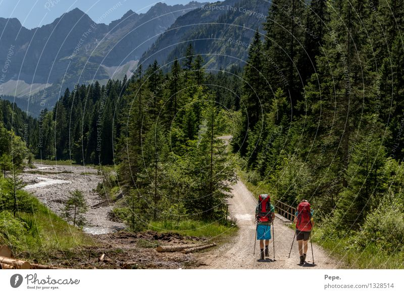 unterwegs Natur grün rot Landschaft Wald Berge u. Gebirge Umwelt gehen Felsen wandern Gipfel Alpen Wolkenloser Himmel Rucksack