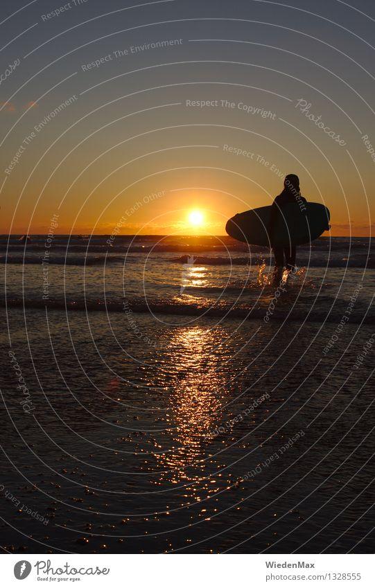 Surfing until sunset Mensch Himmel Jugendliche schön Sommer Junge Frau Sonne Meer Strand Leben feminin Sport träumen Wellen gold Lebensfreude