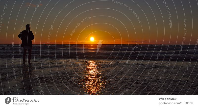 Sunset Dreaming Mensch Sommer Meer Landschaft Ferne Strand Wärme Küste Freiheit Stimmung träumen Wellen gold ästhetisch genießen beobachten
