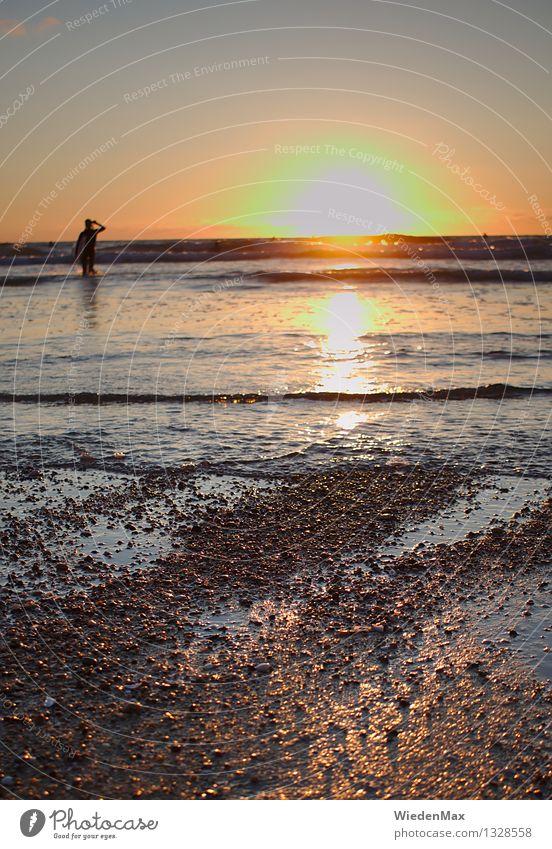 Sonnenuntergang am Atlantik Ferne Freiheit Sommerurlaub Strand Meer Wellen Schwimmen & Baden Surfen Mensch 1 18-30 Jahre Jugendliche Erwachsene Sonnenaufgang