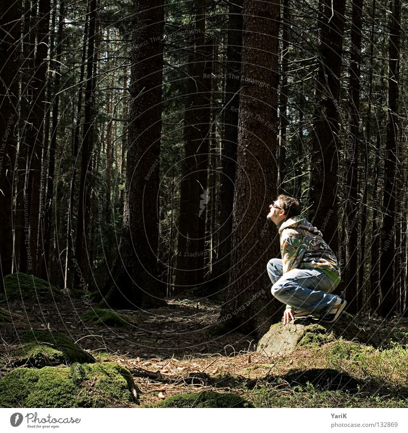 wuff wuff Mann Hand Baum Sonne Freude Blatt Wald Farbe Stein sitzen verrückt Coolness Sträucher Brille Jeanshose Ast