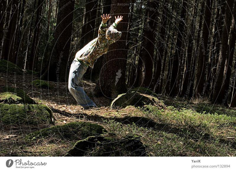 schräge welt Mann Hand Baum Sonne Freude Blatt Wald Farbe Stein Angst verrückt Coolness Sträucher Brille Jeanshose Ast