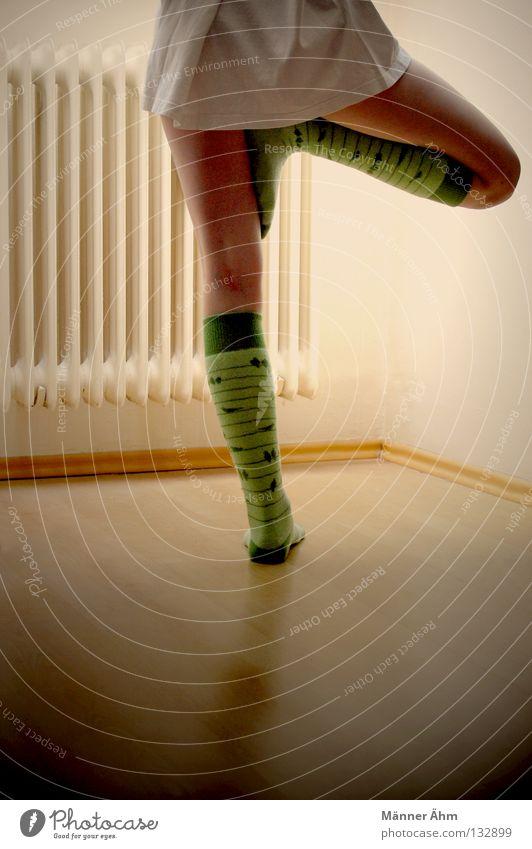 Flamingo. Strümpfe Wohnung Wollsocke Vogel Parkett Laminat Holz Wohnzimmer Fenster T-Shirt Hand Zehen Suche Zehenspitze Licht Physik Kreis Bekleidung heiß Frau
