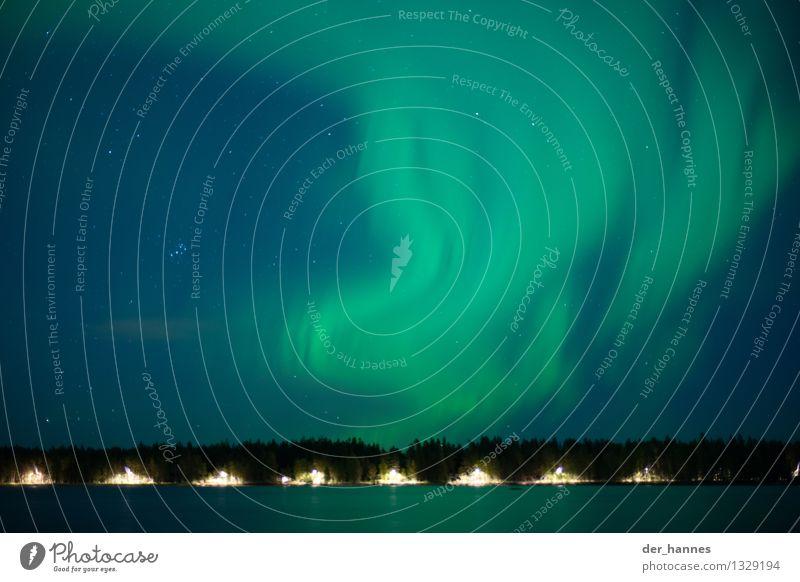 aurora.109 Natur Landschaft Himmel Wolkenloser Himmel Nachthimmel Stern Horizont Wald Seeufer Bewegung ästhetisch außergewöhnlich dunkel elegant fantastisch