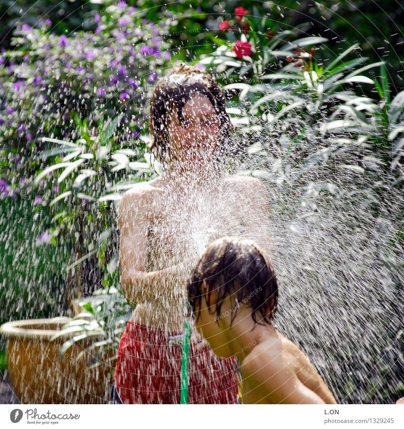 spritzig Freude Spielen Sommer Mensch maskulin Kind 2 13-18 Jahre Jugendliche Wasser Wassertropfen Schönes Wetter Garten Brunft lachen toben frech Fröhlichkeit