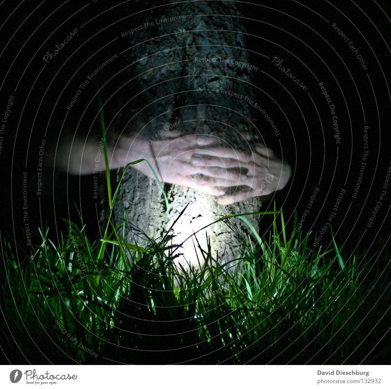 Tree with life Baum Hand Licht Gras Wiese Leben Baumrinde Nacht Langzeitbelichtung Lampe Finger durchsichtig Freundschaft dunkel schwarz grün gruselig
