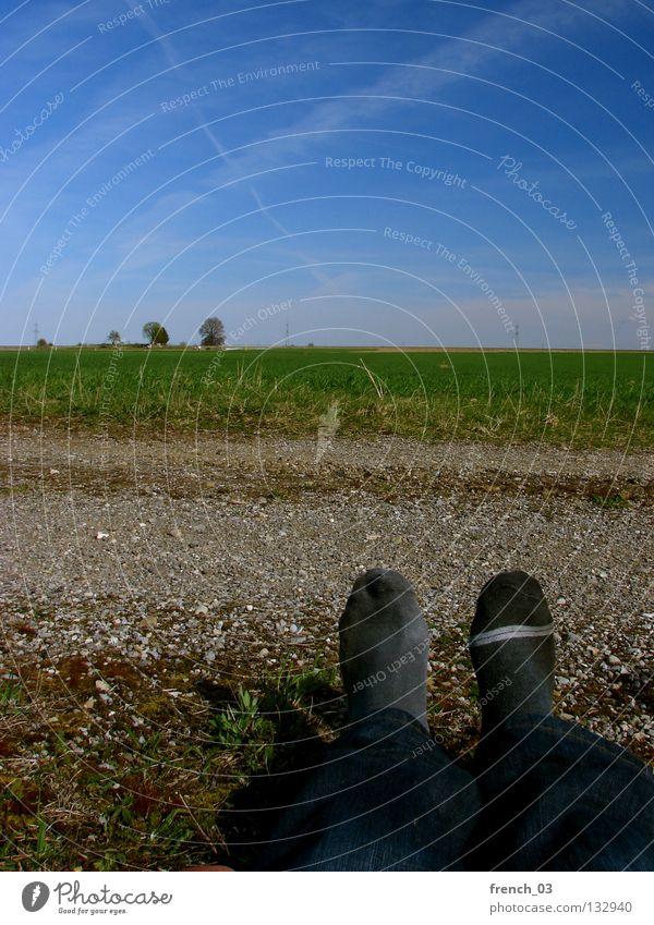 Sockenproblematik I Kondensstreifen Himmel zyan grün Gras Strümpfe Verschiedenheit 2 schwarz Streifen Baum Kies grau Hose dunkel Frühling Sommer Pause lüften