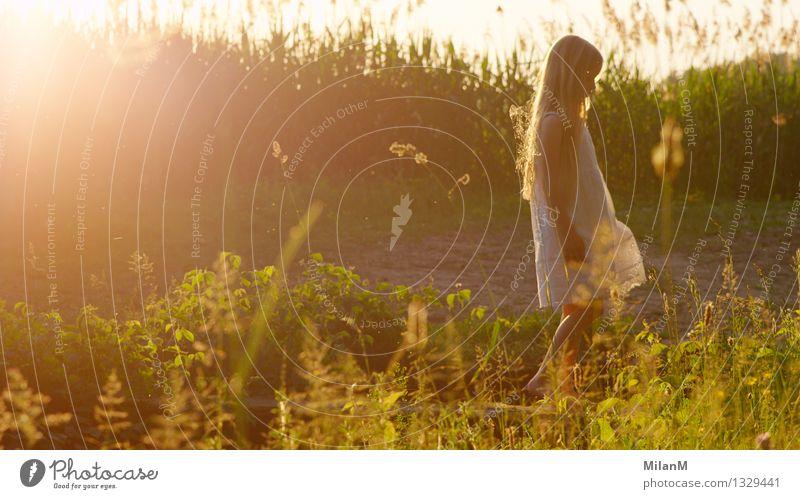 Sommerlicht Freizeit & Hobby Ferien & Urlaub & Reisen Abenteuer Mädchen 3-8 Jahre Kind Kindheit Natur Schönes Wetter Feld beobachten Denken laufen blond