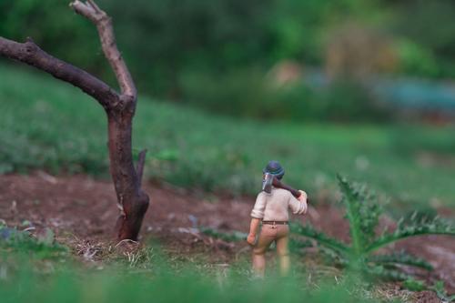 Miniwelten - Baumfäller Mensch Natur Mann Pflanze grün Blatt Wald Erwachsene Gras Garten Arbeit & Erwerbstätigkeit maskulin Feld Erde Landwirtschaft