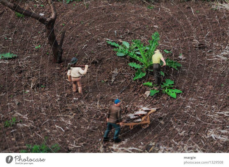 Miniwelten - Gartenarbeit Mensch Mann Pflanze grün Baum Erwachsene Holz braun Arbeit & Erwerbstätigkeit maskulin Feld Erde Landwirtschaft Dienstleistungsgewerbe