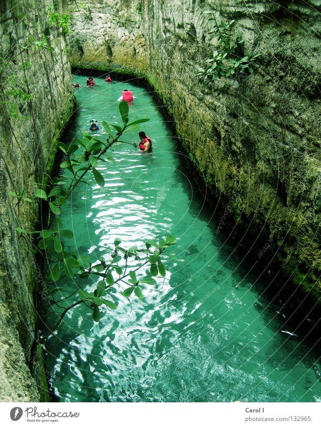 treiben lassen blau Wasser grün Ferien & Urlaub & Reisen Pflanze Freude kalt Sport Spielen Stein Park Schwimmen & Baden rosa frisch Fluss tauchen