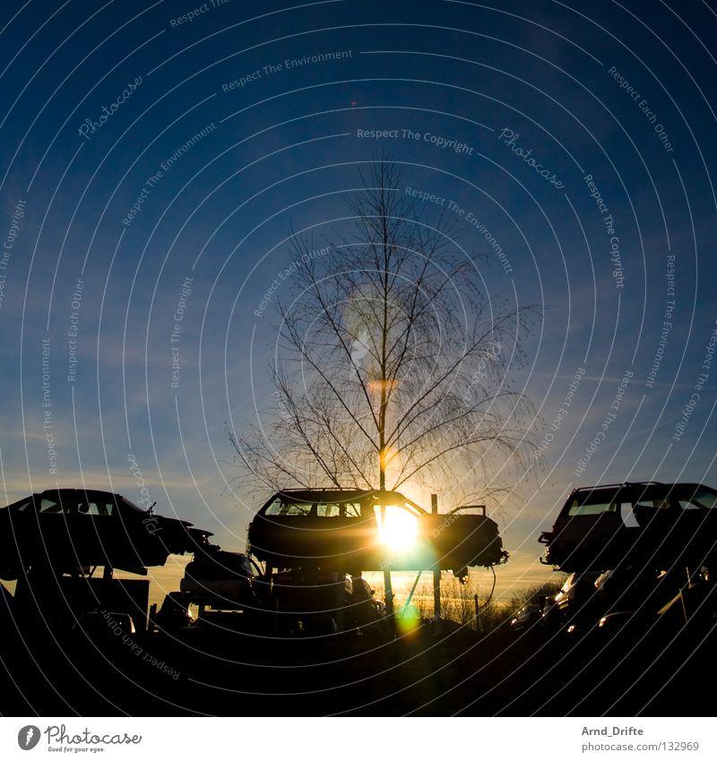Schrottplatz kaputt Sonnenuntergang Baum Gegenlicht Wolken Müll Eisen Blech verfallen Rost Stillleben Umweltverschmutzung Recycling Abendsonne Industrie PKW