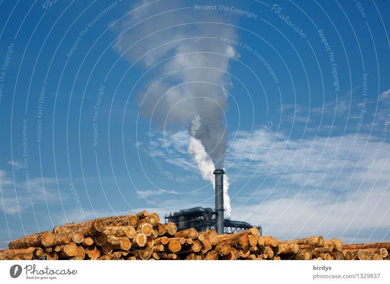 Heizperiode hat begonnen Himmel blau gelb Holz außergewöhnlich Energiewirtschaft hoch Industrie Schönes Wetter Baumstamm Industriefotografie Handel nachhaltig