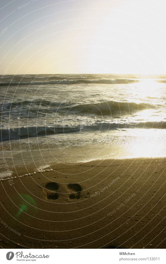 Verschwunden Wasser Sonne Meer Strand Sand Wellen Horizont Spuren Sehnsucht Fußspur verloren Fernweh Flut Rauschen Ebbe spülen