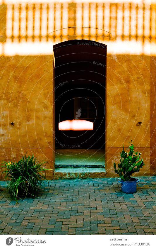 Eingangsbereich Altbau Altstadt aschersleben Detailaufnahme Haus historisch Kleinstadt Mauer Stadt Stadtleben Wohngebiet Tür Tor Zugang Pflanze Topfpflanze