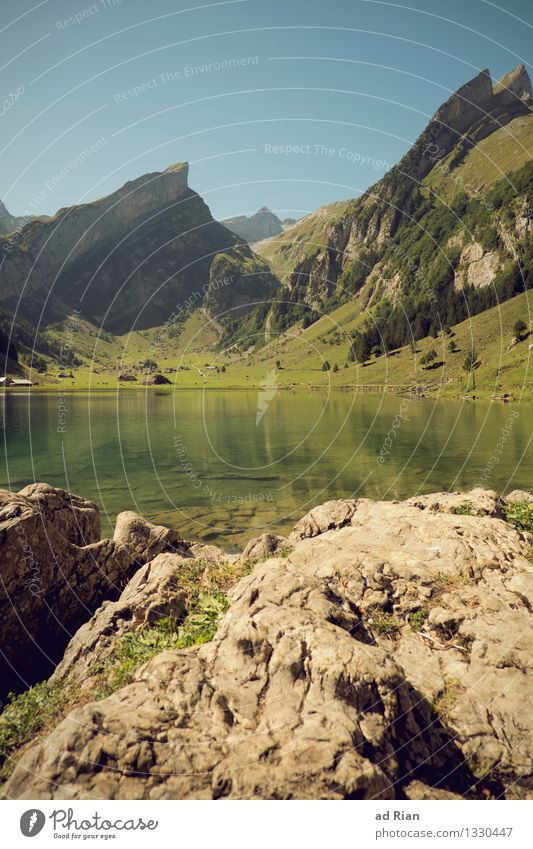 Postkartenwelt [1] wandern Umwelt Natur Landschaft Himmel Wolkenloser Himmel Sommer Klima Schönes Wetter Wärme Grünpflanze Park Wiese Feld Wald Hügel Felsen