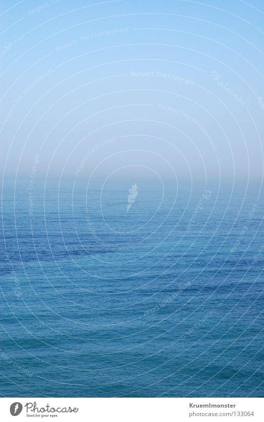 L'océan Wasser schön Himmel Meer blau Sommer ruhig Einsamkeit Traurigkeit Unendlichkeit Sehnsucht Verbindung himmlisch