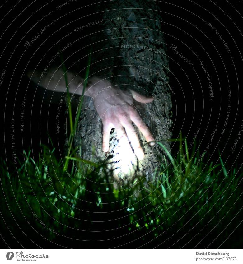 Hand alleine im Wald Baum grün schwarz Lampe Leben dunkel Wiese Gras Freundschaft Kraft Haut Finger gruselig Baumstamm durchsichtig