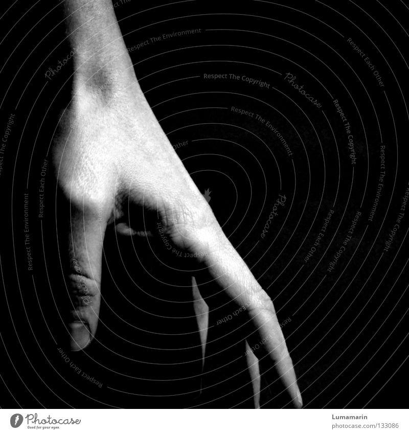 Berührungspunkte Frau Hand Erholung Gefühle Zufriedenheit Finger Kontakt zart berühren leicht sanft beweglich Vorsicht Fingerkuppe
