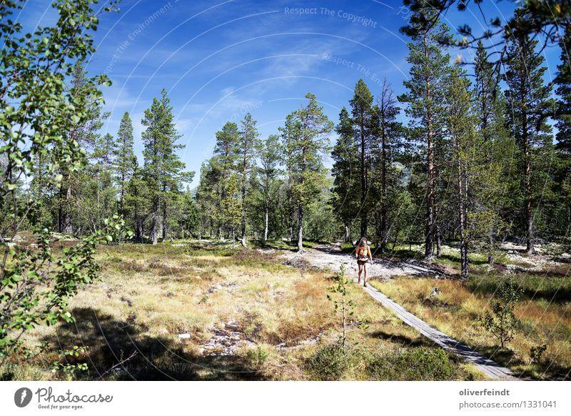 Norwegen - Rondane Mensch Himmel Natur Ferien & Urlaub & Reisen Jugendliche Pflanze Sommer Landschaft Ferne Wald 18-30 Jahre Erwachsene Umwelt Gras feminin