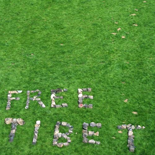 s.t. Wiese Gras Freiheit Stein Asien China Konflikt & Streit Kopfsteinpflaster Politik & Staat Selbstständigkeit Olympiade protestieren Tibet Zensur Lama