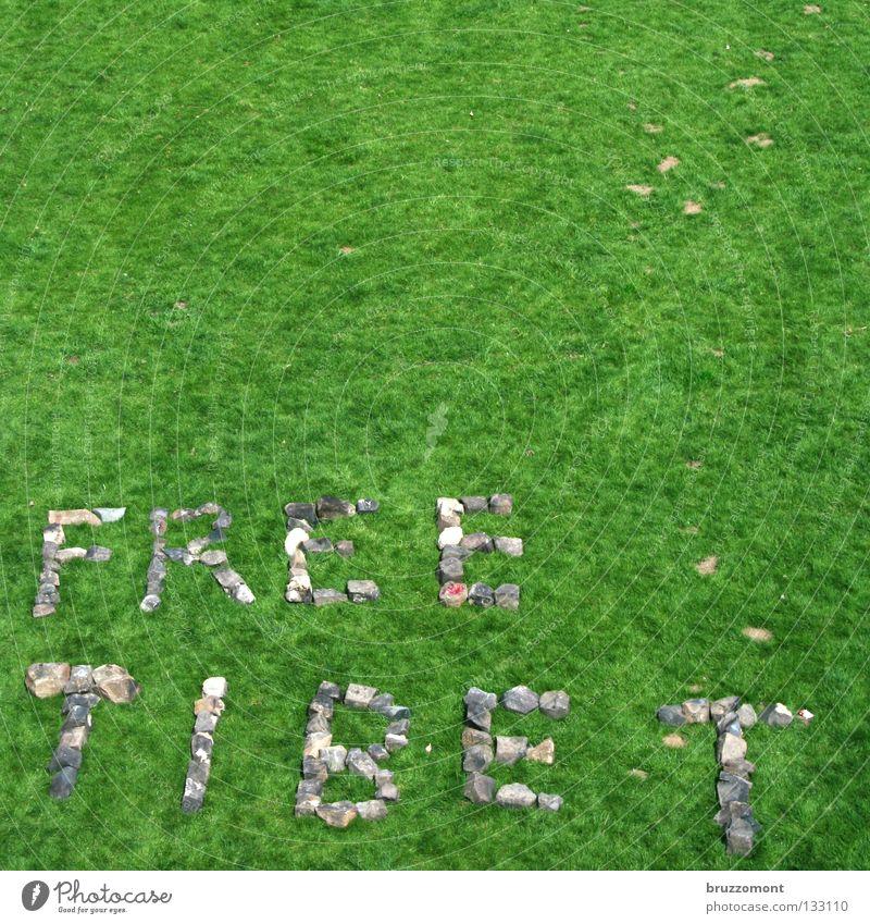 s.t. Wiese Gras Tibet Konflikt & Streit China protestieren Zensur Freiheit Politik & Staat Asien Stein Kopfsteinpflaster Lama Dalai Fackellauf Olympiade