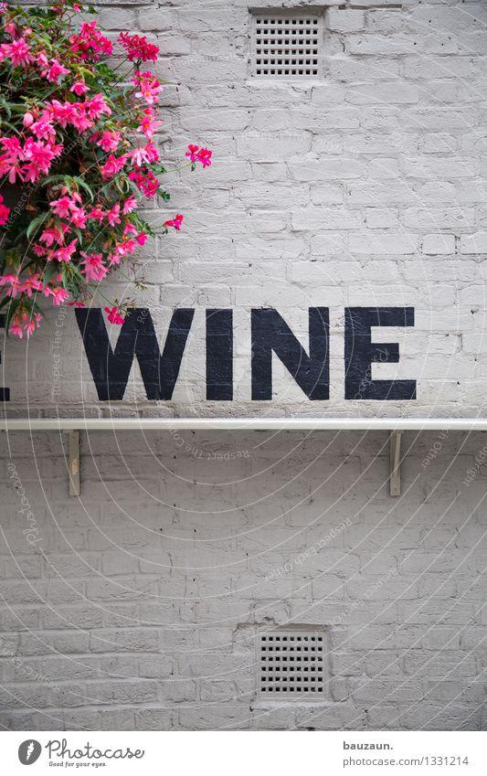 wine. Lebensmittel Wein Abendessen Festessen Geschäftsessen Getränk Ferien & Urlaub & Reisen Tourismus Nachtleben Restaurant Club Disco Bar Cocktailbar ausgehen
