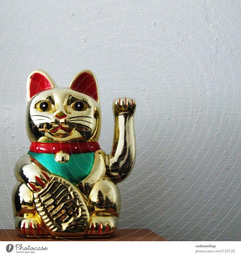 chairman meow Katze Kraft gold Asien China Statue Kunststoff heilig winken Hauskatze Tempel Imbiss Chinesisch Gotteshäuser Götze
