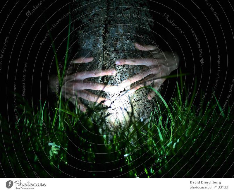 Bernd der Baum Hand grün schwarz Lampe Leben dunkel Wiese Gras Freundschaft Kraft Haut Finger gruselig Baumstamm durchsichtig