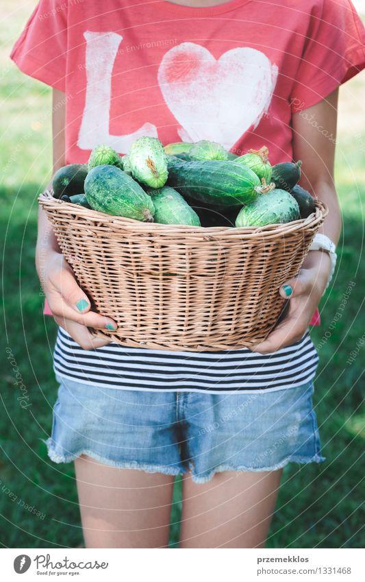 Mädchen, das Weidenkorb mit Gurken trägt Gemüse Bioprodukte Lifestyle Gesundheit Gesunde Ernährung Sommer Garten Kind Mensch 1 8-13 Jahre Kindheit frisch
