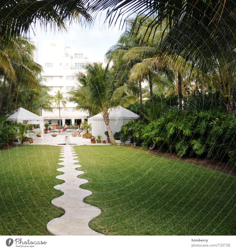 inside out Ferien & Urlaub & Reisen Hotel Florida Eingang Süden Südstaaten Baum Palme Unterkunft Park deluxe Küste Erholung Sommer Garten Erfolg holiday