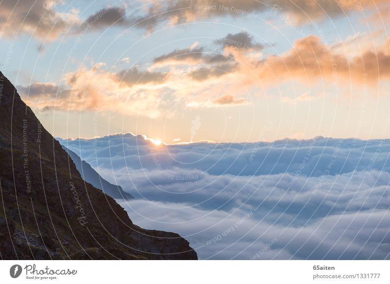Sonne und mehr Wolkenmeer Umwelt Natur Urelemente Luft Wasser Himmel Sonnenaufgang Sonnenuntergang Sommer Klima Wetter Schönes Wetter Felsen Alpen
