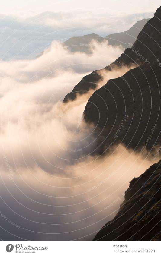 Noch mehr Wolkenmeer II Natur Urelemente Luft Wasser Himmel Sonnenaufgang Sonnenuntergang Sommer Klima Klimawandel Wetter Alpen Berge u. Gebirge ästhetisch