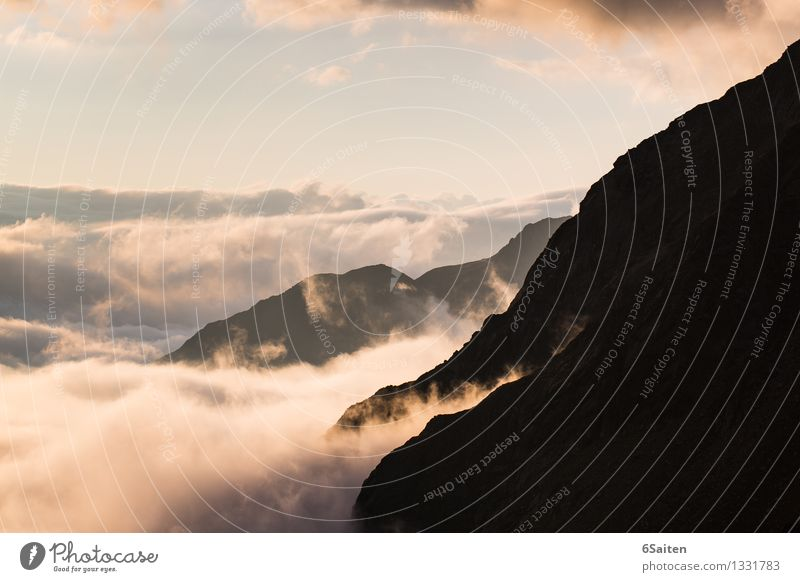 Noch mehr Wolkenmeer Umwelt Natur Urelemente Luft Wasser Himmel Horizont Sonnenaufgang Sonnenuntergang Frühling Sommer Klima Klimawandel Wetter Felsen Alpen