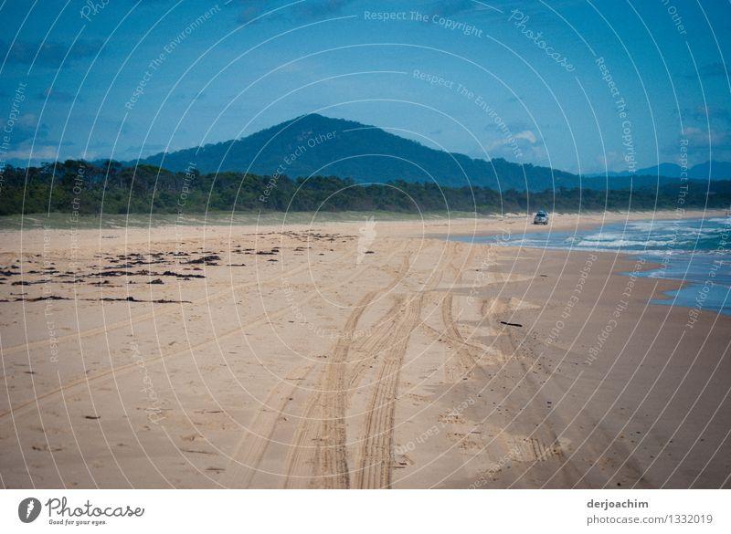 Endlos Sommer Wasser Meer Landschaft Strand Leben Küste Holz braun Sand PKW genießen Ausflug fantastisch beobachten Schönes Wetter