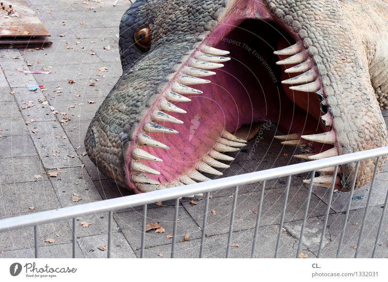 porto / serientod Tier Wildtier Zaun Tiergesicht skurril Krallen Dinosaurier Totes Tier