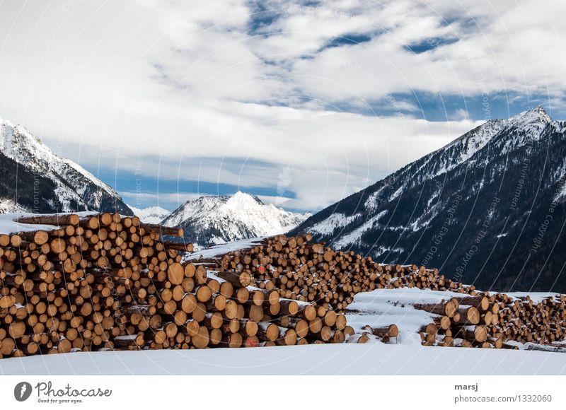 Genügend Holz für einen kalten, langen Winter Natur Landschaft Wolken Schönes Wetter Schnee Alpen Berge u. Gebirge Gipfel Schneebedeckte Gipfel Ordnungsliebe