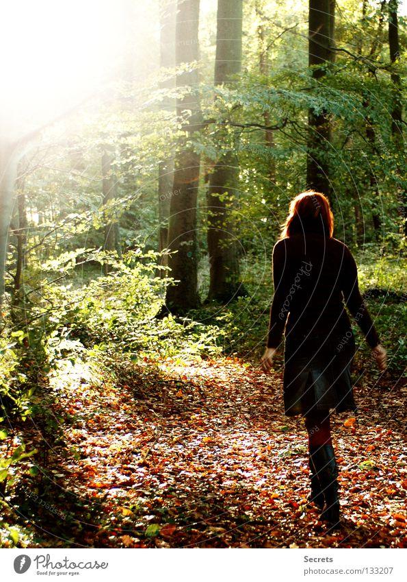 Spaziergang ruhig Einsamkeit Licht Herbst Geborgenheit Vertrauen Gedanke Farbenspiel im Wald der Weg Leben Freiheit junges Mädchen