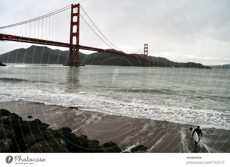 golden fate Mensch Wasser Wolken grau Küste Felsen Seil Brücke stehen USA Teile u. Stücke Stahl Kalifornien Surfer Surfbrett Januar
